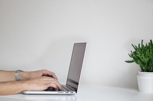 pisanje člankov cena
