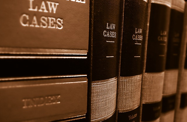 sodni prevajalec